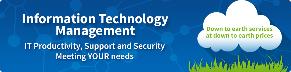 Information Technology Management: IT Productivity, Support and Security meeting your needs